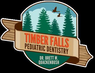 The Pediatric Dentist of Gilbert, AZ at Timber Falls Pediatric Dentistry, Dr. Quackenbush, Receives Top Dentist Award for the 17th Consecutive Year 1