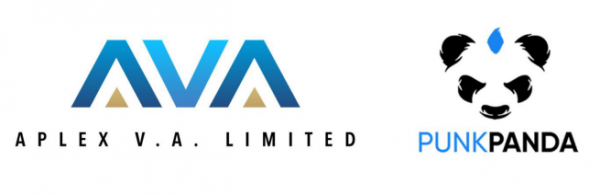 Aplex V.A. will Explore and Launch New Investments in 2021 3