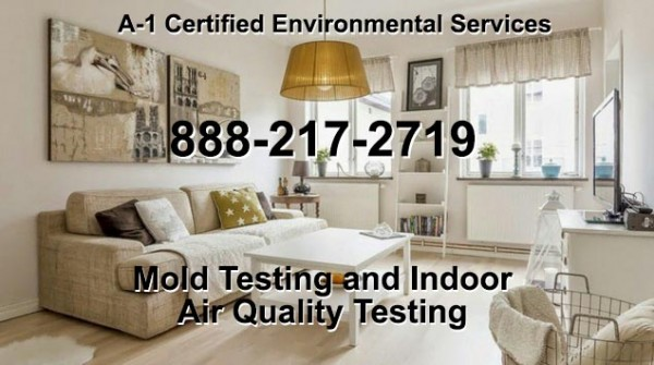 Odor Removal in San Francisco: A-1 Certified Environmental Services LLC Invests in the latest Hydroxyl Generators 2