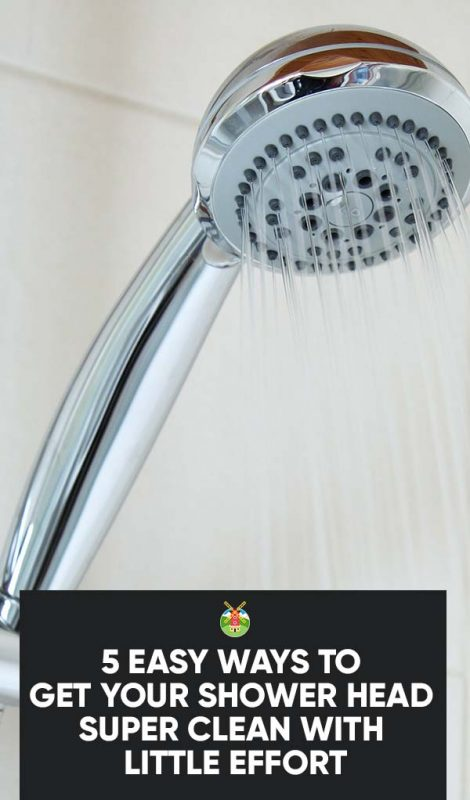 Some Useful Tips For Cleaning The Shower Head 1