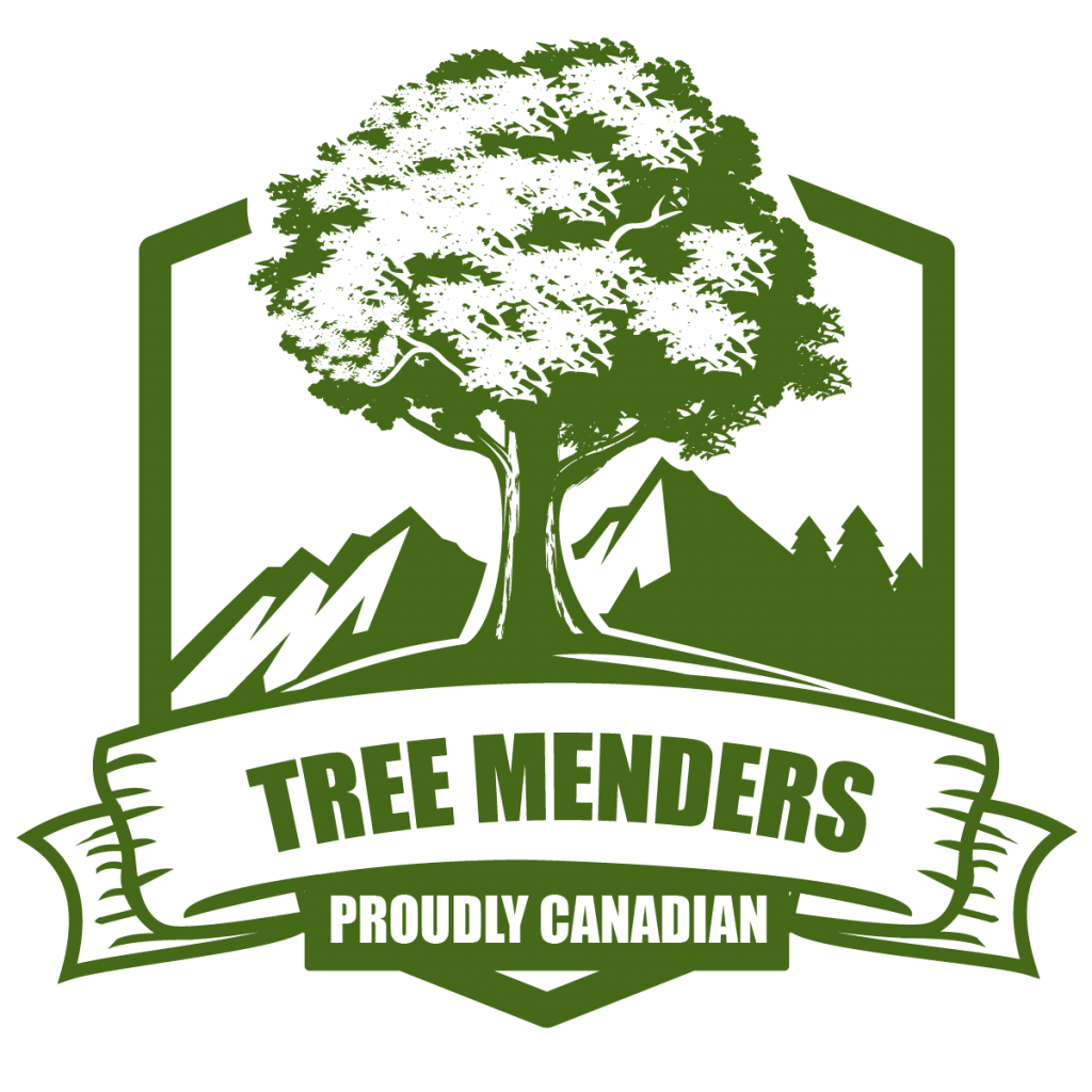 Tree Menders, an Expert Arborist Company, is Expanding its Services in Toronto 4