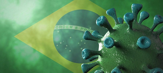 Urban pests increase the risk of transmission of the corona virus (COVID-19) Brazil-hire a pest control agent 4