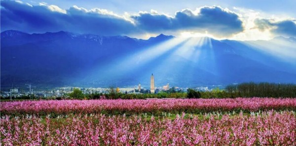 Speed up the Transformation and Upgrading of Yunnan's Tourism, Reshaping the New Image of That 22