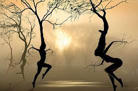 Dance Like a Tree for 15 seconds – and for Climate 17