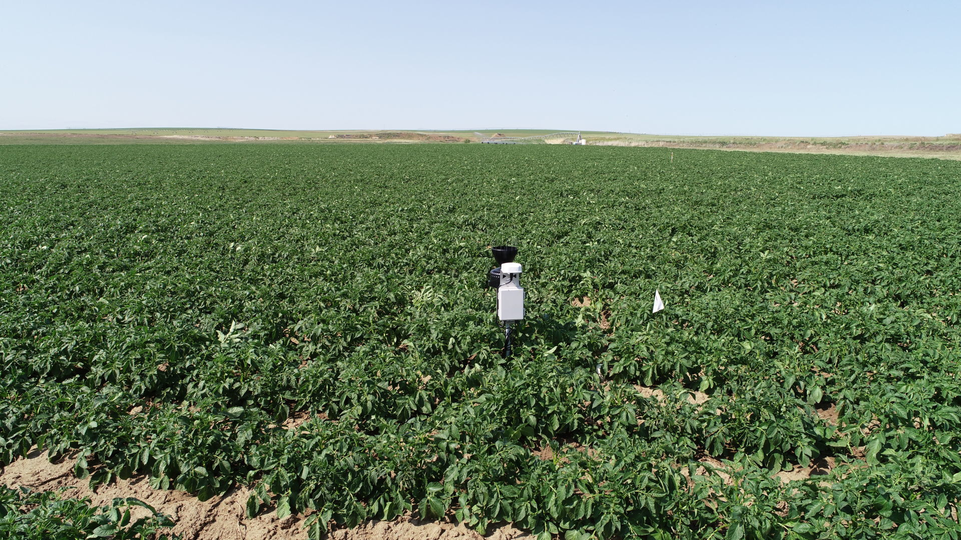 Idaho Company Helps Farmers Conserve Water While Increasing Crop Yield 11