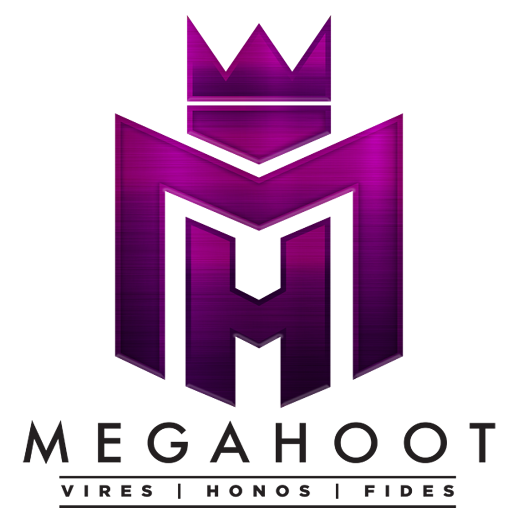 MegaHoot Technologies Launches The VeroHive Dealroom, Focused on Privacy and Security 3