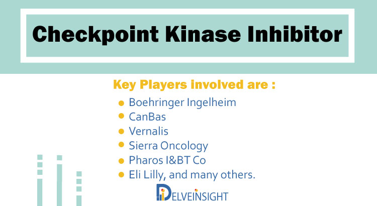 Checkpoint Kinase Inhibitor Pipeline Analysis | Report by DelveInsight 1
