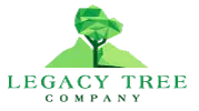Albuquerque Tree Experts Has Announced the Launch of a New Website That Features All Tree Service Albuquerque 1