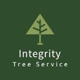 Oklahoma City Tree Service Experts Launches New Website Featuring All Tree Services 1