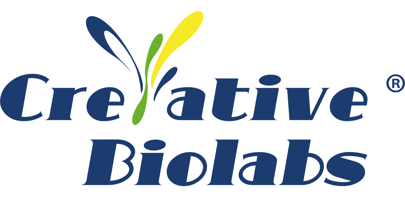 Creative Biolabs Introduces NHC and Nelfinavir-related COVID-19 Drug Discovery Services 1