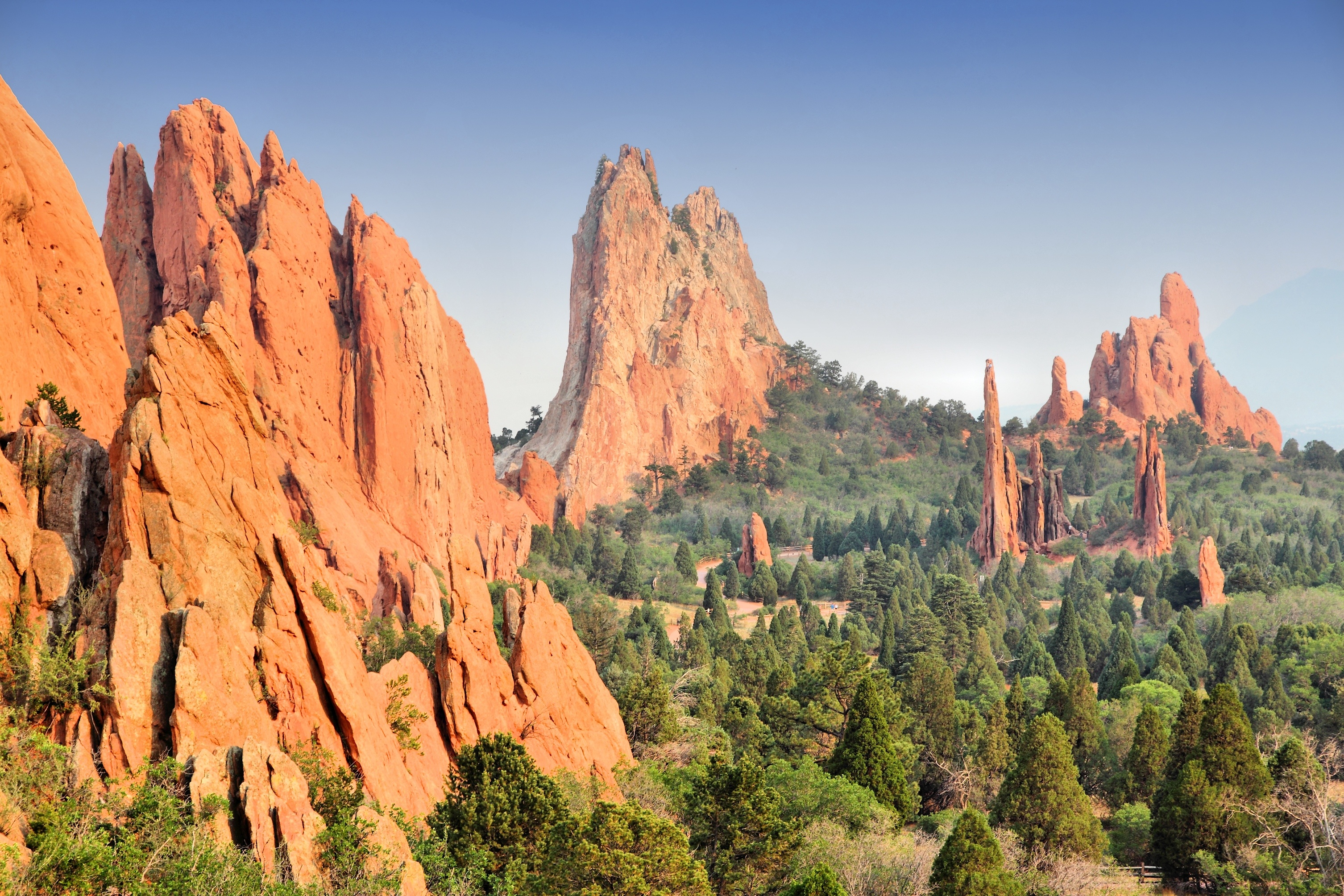 Insight Pest Solutions Has Expanded Its Pest Control Services To Reach More People In Colorado Springs 2