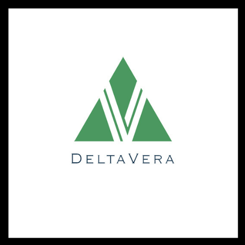 DeltaVera Engages Findit To Launch Online Marketing Campaign To Improve Brand Presence and Drive Traffic To Their Site 4