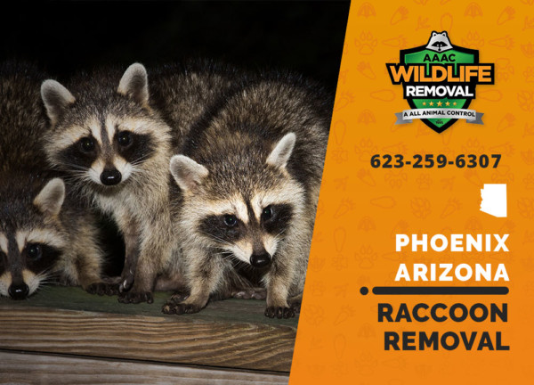 AAAC Wildlife Removal of Phoenix: Going Beyond the Call of Duty to Humanely Evict Pesky Critters, Repair Damage, And Prevent Further Intrusions 3