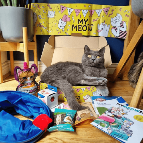 Founders Of British Dog Brand Wufwuf Announce Sister Mymeow Package 2