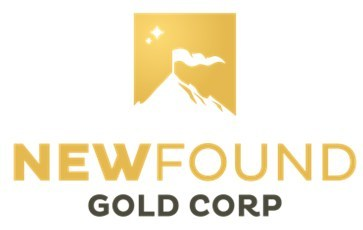 New Found Gold Appoints Douglas Hurst, Founding Member of Newmarket Gold, to Board of Directors 1