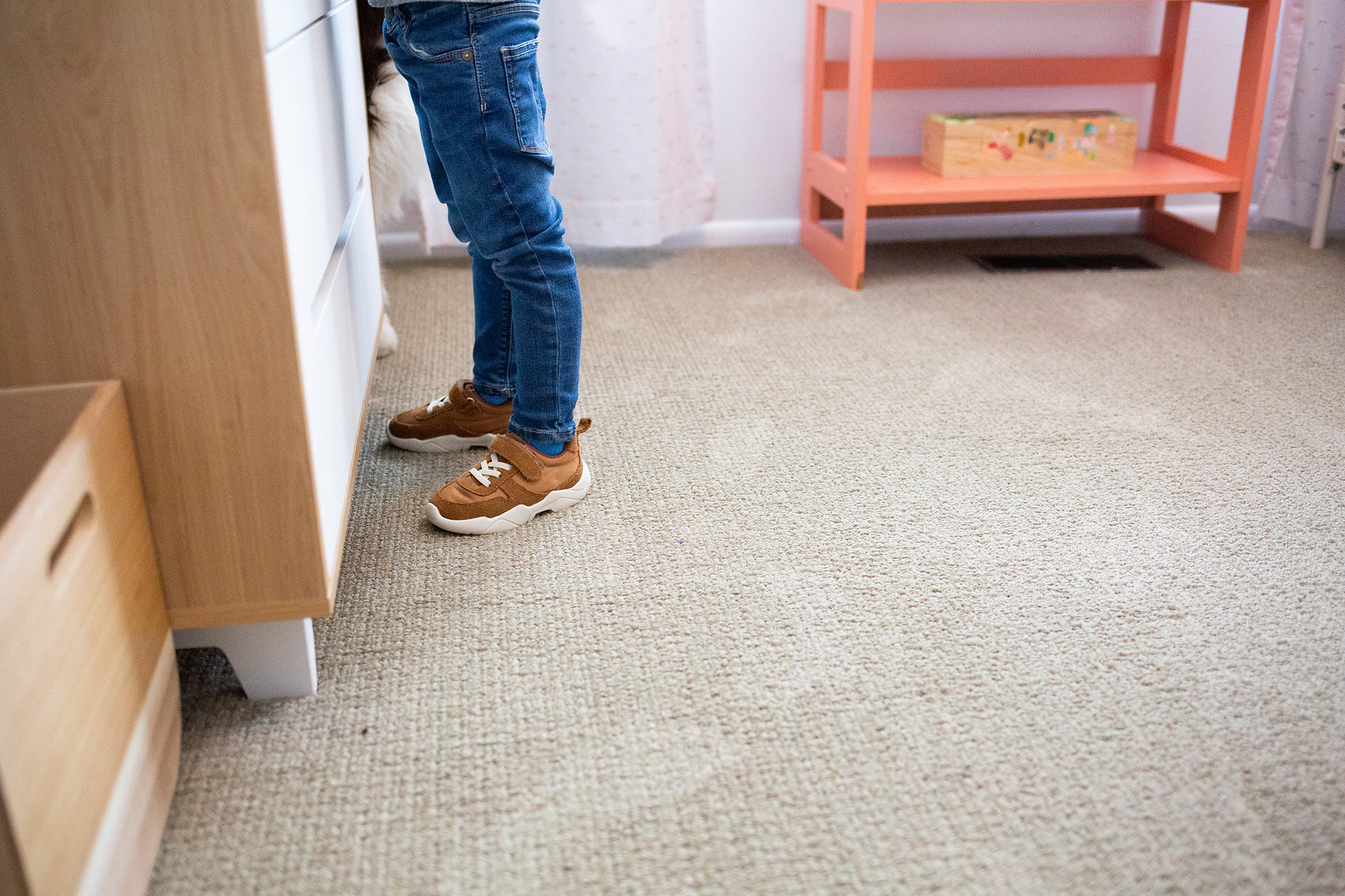 Indianapolis Carpet Cleaning Company Launches New Website 2
